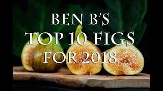 Ben Bs Top 10 Fig Varieties For 2018