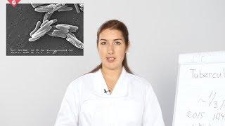 The Ziehl-Neelsen method for staining acid-fast bacteria