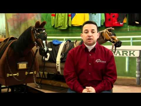 How to Become a Thoroughbred Trainer
