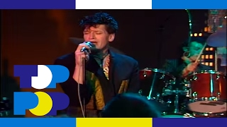 Herman Brood & His Wild Romance - Babies • TopPop