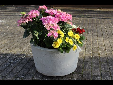 Download Blumentopf Pflanzkubel Selber Machen Video 3gp Mp4 Flv Hd