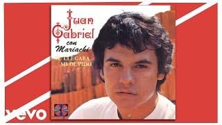 Juan Gabriel - Te Llegará Mi Olvido (Cover Audio)