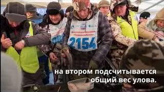 Народная рыбалка 2018 на Московском море