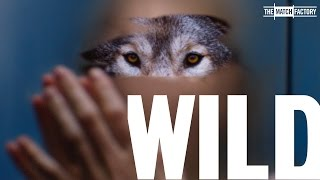 Picture of a movie: Wild