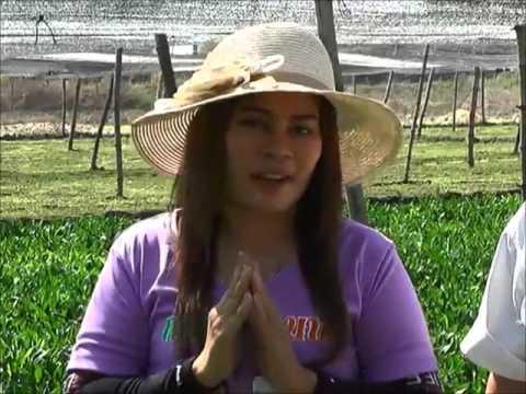ปรสิต 2010 วิกิพีเดีย