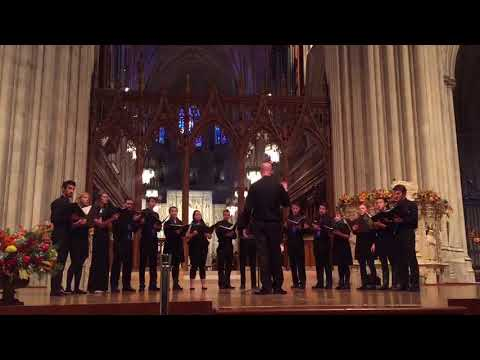 Emulate sings in the National Cathedral