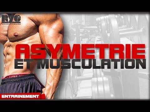 Sportif kinezio le tejp-emplâtre pour les muscles et les articulations acheter