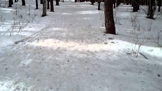 preview picture of video 'Не большой фрагмент из гонки по биатлону на призы Затулы Владимира Генадьевича'