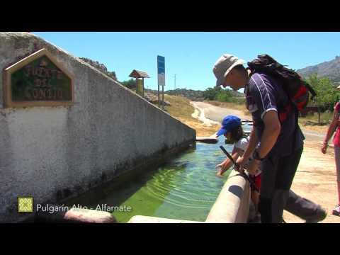 Der Große Wanderweg Málagas. Etappe 10: Alfarnatejo (Pulgarín Alto) – Alfarnate (Deutsch)