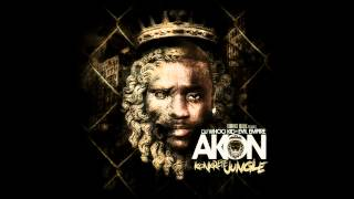 Akon ft. Fabulous & Money J - Salute 100 Ya'll nihrZ42o [HD]