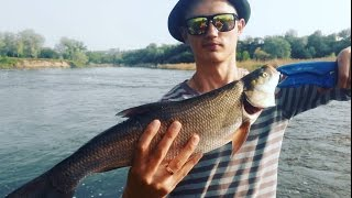 Вот Это Рыбалка на Ультралайтовый Спиннинг! Ловля Трофейного Жереха и Щуки  Весной