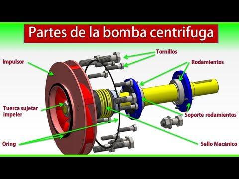 Bombas centrifugas▶️✅Bombas centrifugas tipos▶️Partes de la bomba centrifuga.