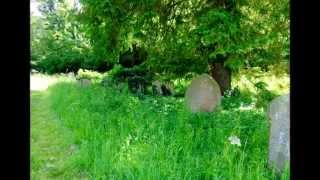 preview picture of video 'Stetchworth Parish Church, Cambridgeshire, PART I,  by Sheila, June 8, 2014'