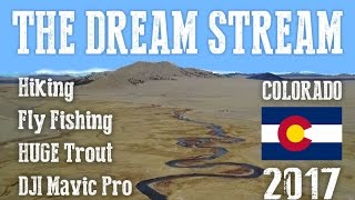 "Fly Fishing ""The Dream Stream"" - South Platte River, Colorado"