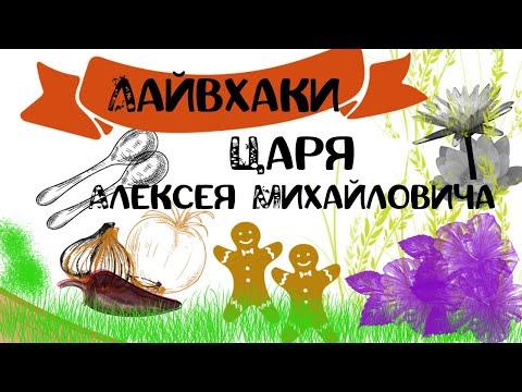 Манускрипт Войнича разгадан: Зачем царь Алексей Михайлович штопал валенки?