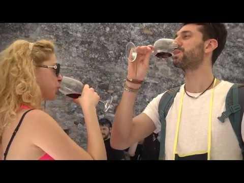 Il mare del Garda: giornata della cultura del vino e dell'olio