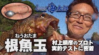 村上晴彦が根魚玉-ねうおだま-海太郎-アコウやガシラほかライトロック用ジグヘッドを実釣解説