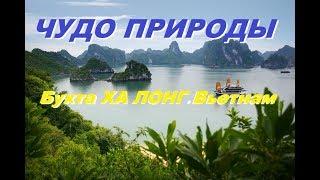 Неописуемое  Чудо природы. Бухта Халонг. Вьетнам