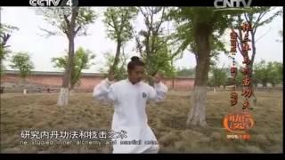 20140903 快乐汉语   张三丰与武当功夫 语言点:……到(了)……地步