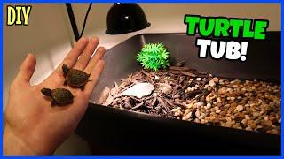 My New Baby Box Turtle Setup!
