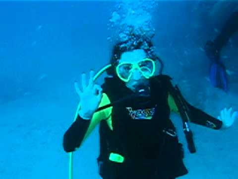 Scuba Diving in West Palm Beach!