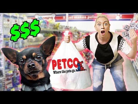 Buying My Dog EVERYTHING He Touches!