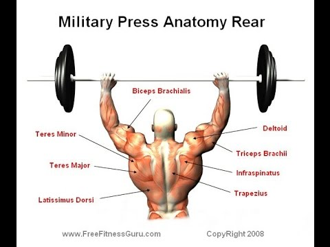 Jak szybko budować mięśni klatki piersiowej prasy