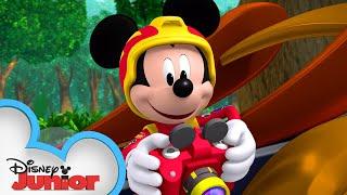 Animal Antics | Mickey Mouse Mixed-Up Adventures | @Disney Junior