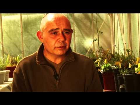 El suelo en la Agricultura Ecológica - 2009