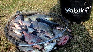 Соревнования по рыбной ловле на фидер 2020