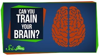 Can You Really Train Your Brain?