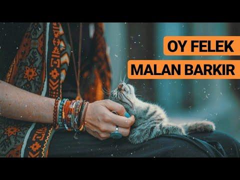 HiraiZerdüş - Malan Barkır klip izle