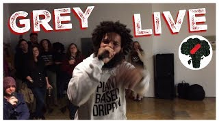 Vegan Thanksgiving Rap LIVE - Vegan Rapper Grey