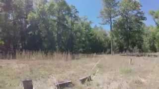 Exploring Shiloh Cemetery in Withlacoochee State Forest