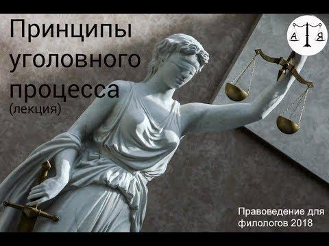 Принципы уголовного судопроизводства