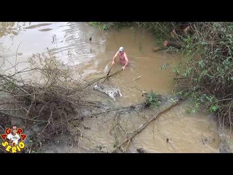 Wagnew o Fiscal do Povo obriga prefeitura através de denúncia na polícia ambiental a retirar a capivara morta no Rio São Lourenço