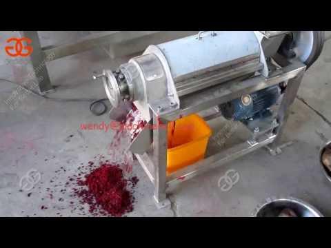 Passion Fruit Juice Making Machine |Fruit Juice Crusher And Extractor Machine
