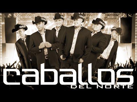 Caballos Del Norte - Bote de Cerveza TRIBAL (3Ball)  & DJ Chewe