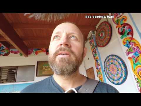 Video Last souvenir shopping trip in Costa Rica after 3 years