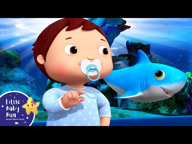 Baby Shark Dance | BRAND NEW! | Little Baby Bum Nursery Rhymes & Kids Songs | Songs for Children
