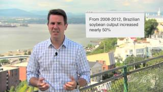 Ask an Expert: Understanding Brazil's Import-Export Market