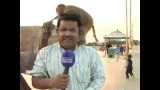 Смешные интервью #2