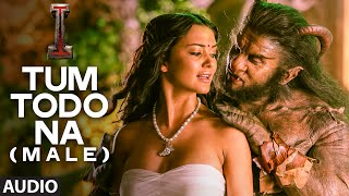 'Tum Todo Na (Male)' FULL AUDIO Song 'I'
