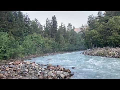 Musica Para Relaxar Rpido    Som de Pssaro Natureza   Agua Corrente na Floresta