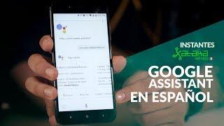 Platicamos Google Assistant en ESPAÑOL MEXICANO