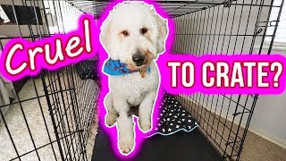 Are Dog Crates Cruel?? Watch This  //  Part 2