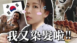 [韓國日常] 我又去染髮啦+逛大創+試吃韓式雞蛋仔 Ft. 接近全裸入鏡的小巴西 |Lizzy Daily