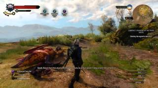 witcher 3 how to kill jenny o the woods