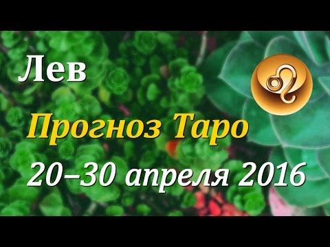 2017 год петуха гороскоп на год для овна