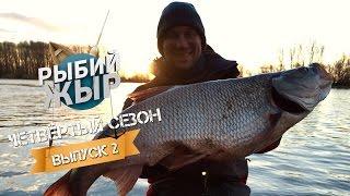 Рыбий жир передача о рыбалке горьковское водохранилище жереха